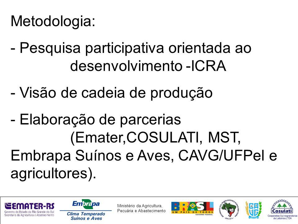 Ministério da Agricultura, Pecuária e Abastecimento Metodologia: - Pesquisa participativa orientada ao desenvolvimento -ICRA - Visão de cadeia de produção - Elaboração de parcerias (Emater,COSULATI, MST, Embrapa Suínos e Aves, CAVG/UFPel e agricultores).