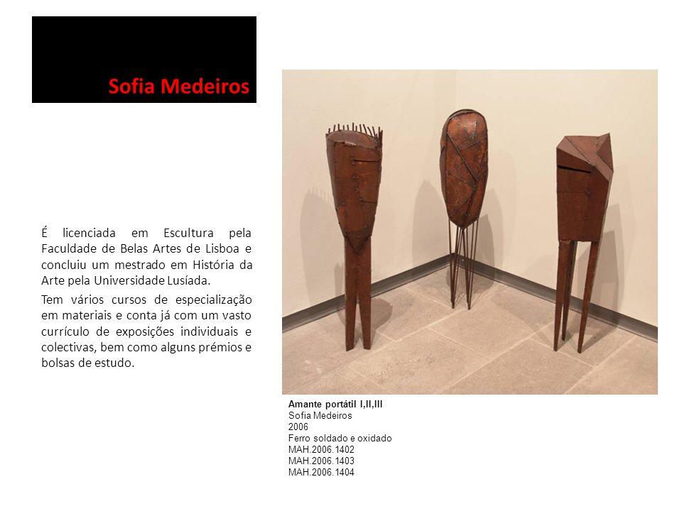 Sofia Medeiros É licenciada em Escultura pela Faculdade de Belas Artes de Lisboa e concluiu um mestrado em História da Arte pela Universidade Lusíada.