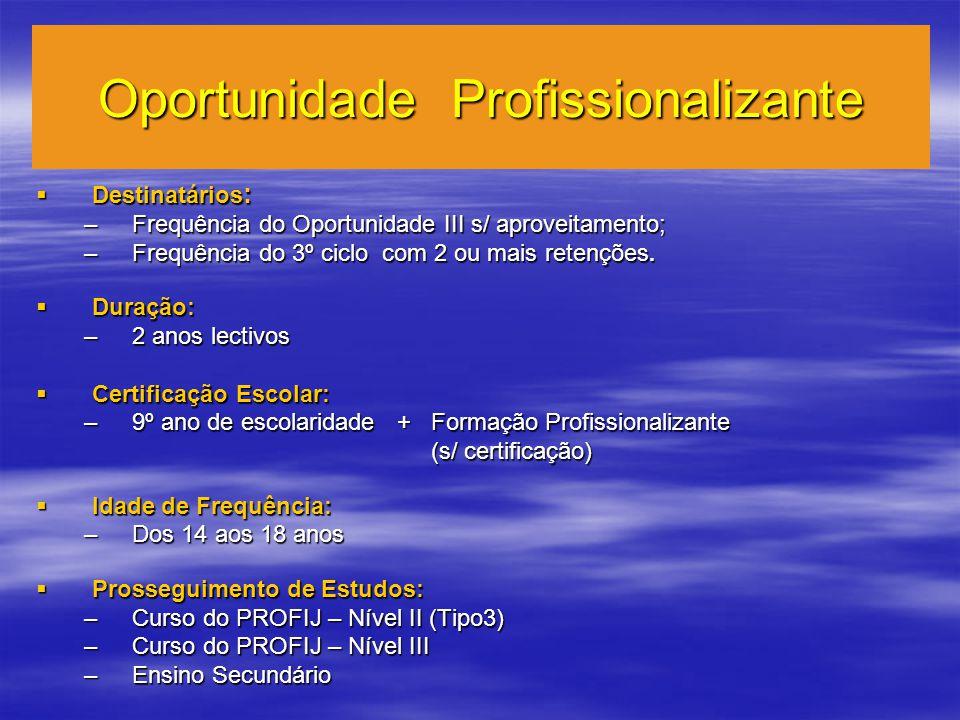 Oportunidade Profissionalizante Destinatários : Destinatários : –Frequência do Oportunidade III s/ aproveitamento; –Frequência do 3º ciclo com 2 ou mais retenções.