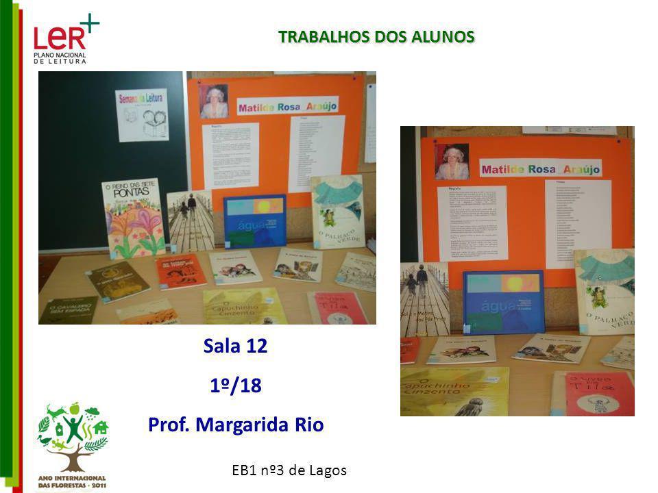 TRABALHOS DOS ALUNOS Sala 12 1º/18 Prof. Margarida Rio