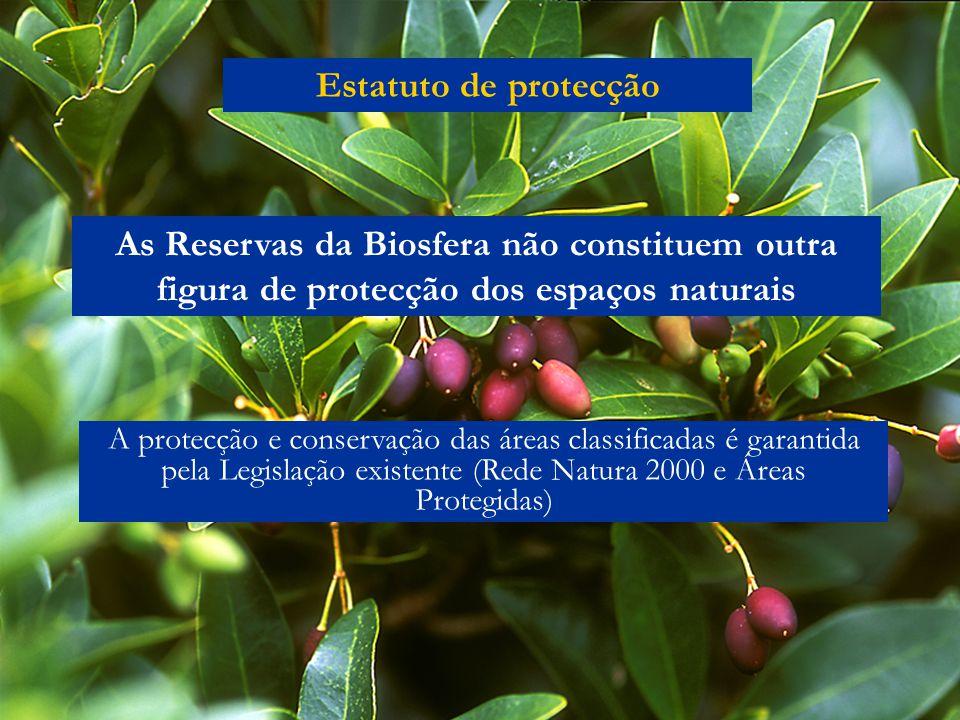 Estatuto de protecção As Reservas da Biosfera não constituem outra figura de protecção dos espaços naturais A protecção e conservação das áreas classificadas é garantida pela Legislação existente (Rede Natura 2000 e Áreas Protegidas)