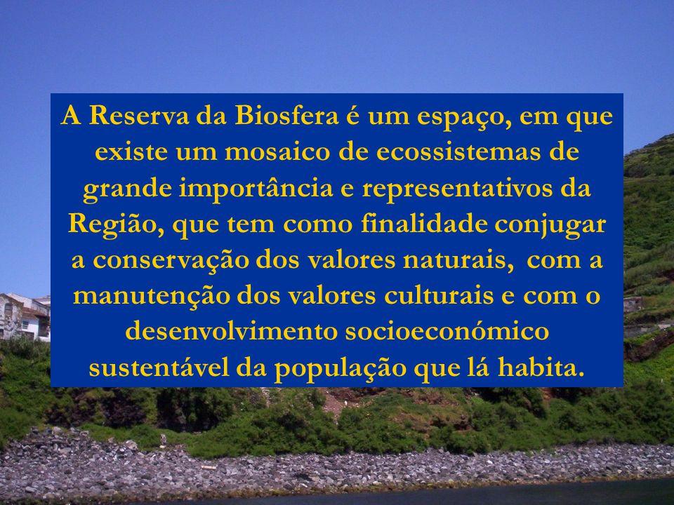 A Reserva da Biosfera é um espaço, em que existe um mosaico de ecossistemas de grande importância e representativos da Região, que tem como finalidade conjugar a conservação dos valores naturais, com a manutenção dos valores culturais e com o desenvolvimento socioeconómico sustentável da população que lá habita.