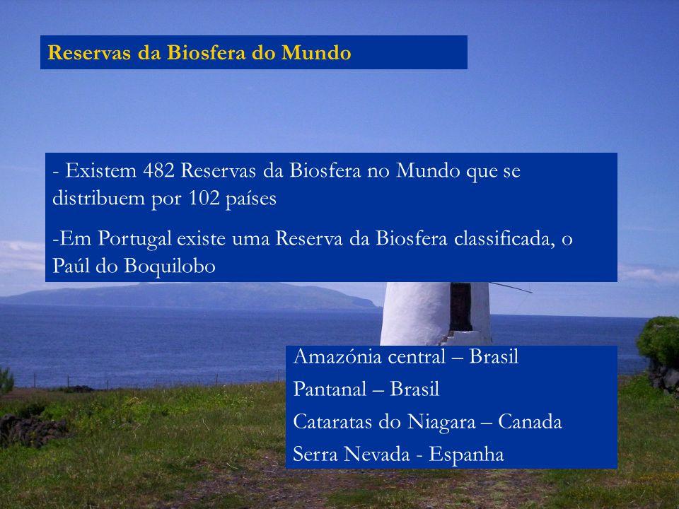 Reservas da Biosfera do Mundo - Existem 482 Reservas da Biosfera no Mundo que se distribuem por 102 países -Em Portugal existe uma Reserva da Biosfera classificada, o Paúl do Boquilobo Amazónia central – Brasil Pantanal – Brasil Cataratas do Niagara – Canada Serra Nevada - Espanha