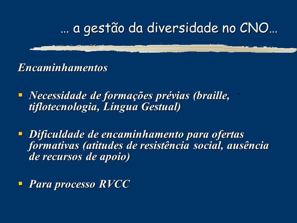 … a gestão da diversidade no CNO… Encaminhamentos Necessidade de formações prévias (braille, tiflotecnologia, Língua Gestual) Necessidade de formações