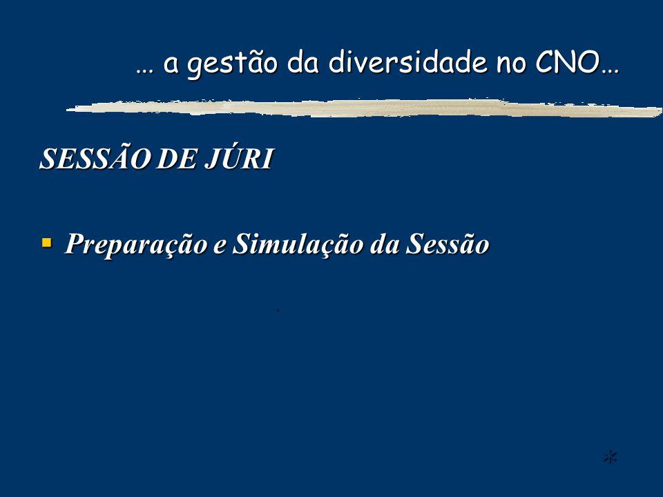 … a gestão da diversidade no CNO… SESSÃO DE JÚRI Preparação e Simulação da Sessão Preparação e Simulação da Sessão **** ++++