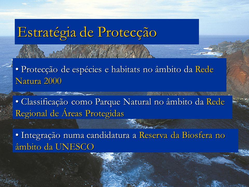 Estratégia de Protecção Classificação como Parque Natural no âmbito da Rede Regional de Áreas Protegidas Classificação como Parque Natural no âmbito d