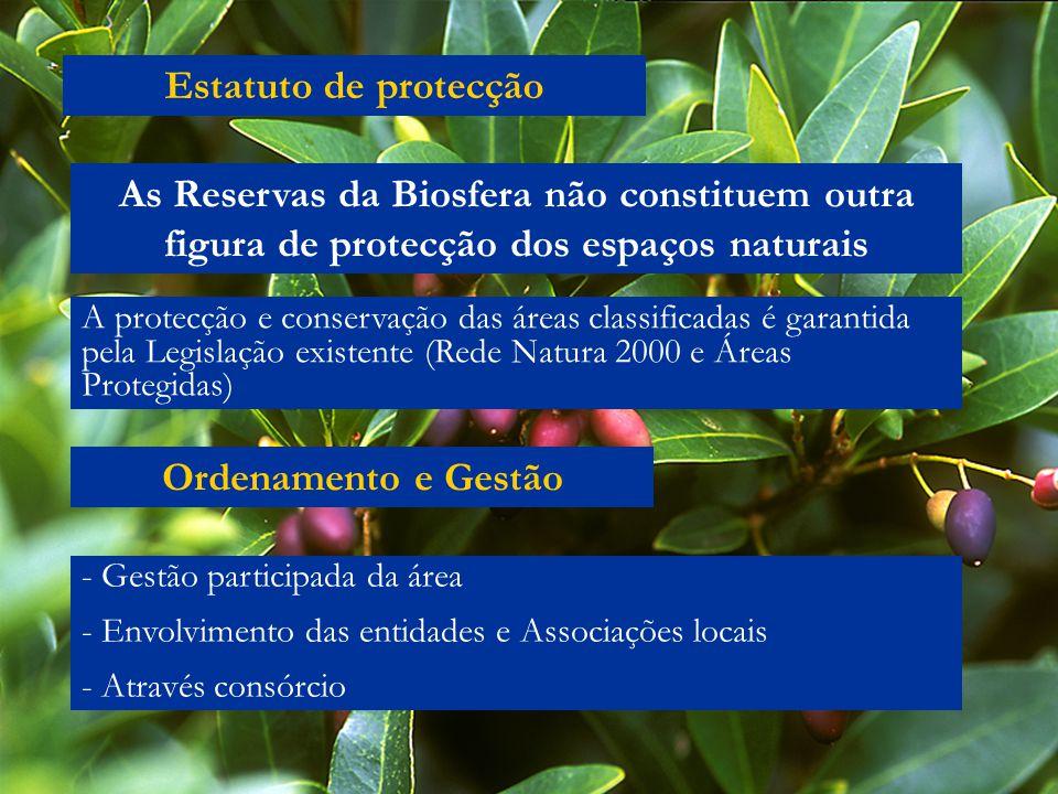 Estatuto de protecção As Reservas da Biosfera não constituem outra figura de protecção dos espaços naturais A protecção e conservação das áreas classi