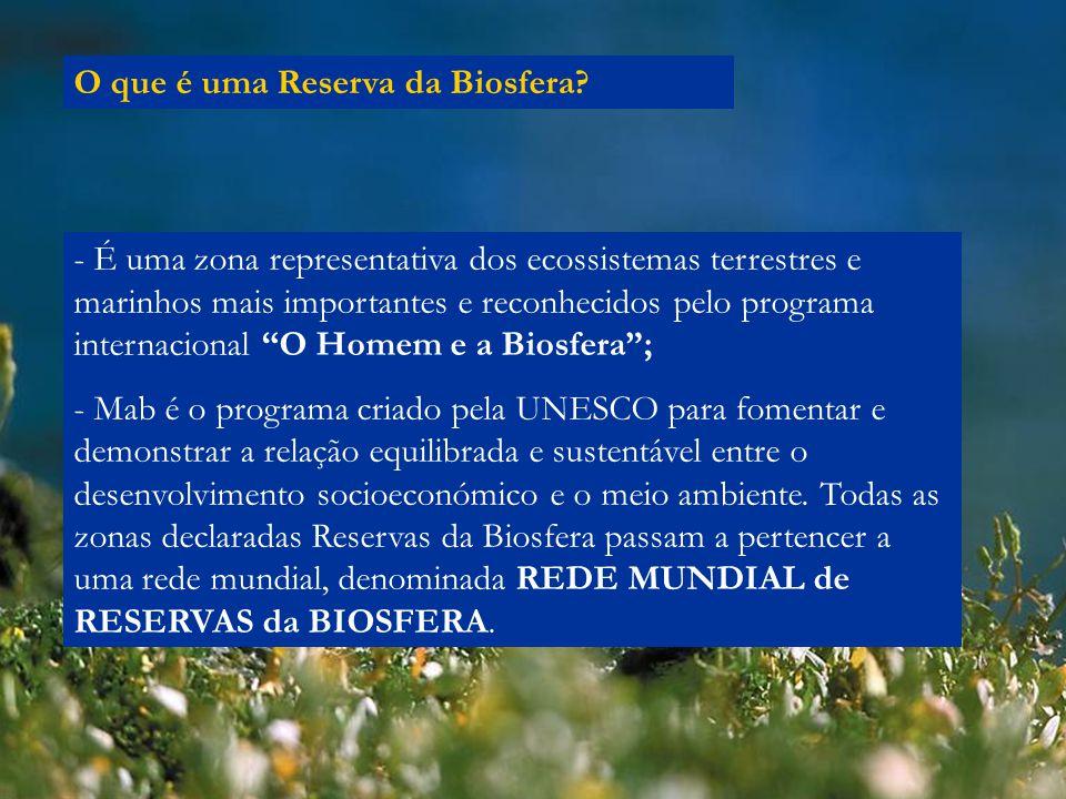 O que é uma Reserva da Biosfera? - É uma zona representativa dos ecossistemas terrestres e marinhos mais importantes e reconhecidos pelo programa inte