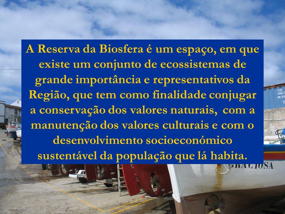 A Reserva da Biosfera é um espaço, em que existe um conjunto de ecossistemas de grande importância e representativos da Região, que tem como finalidad