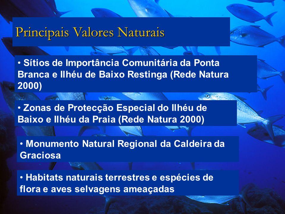 Sítios de Importância Comunitária da Ponta Branca e Ilhéu de Baixo Restinga (Rede Natura 2000) Principais Valores Naturais Zonas de Protecção Especial