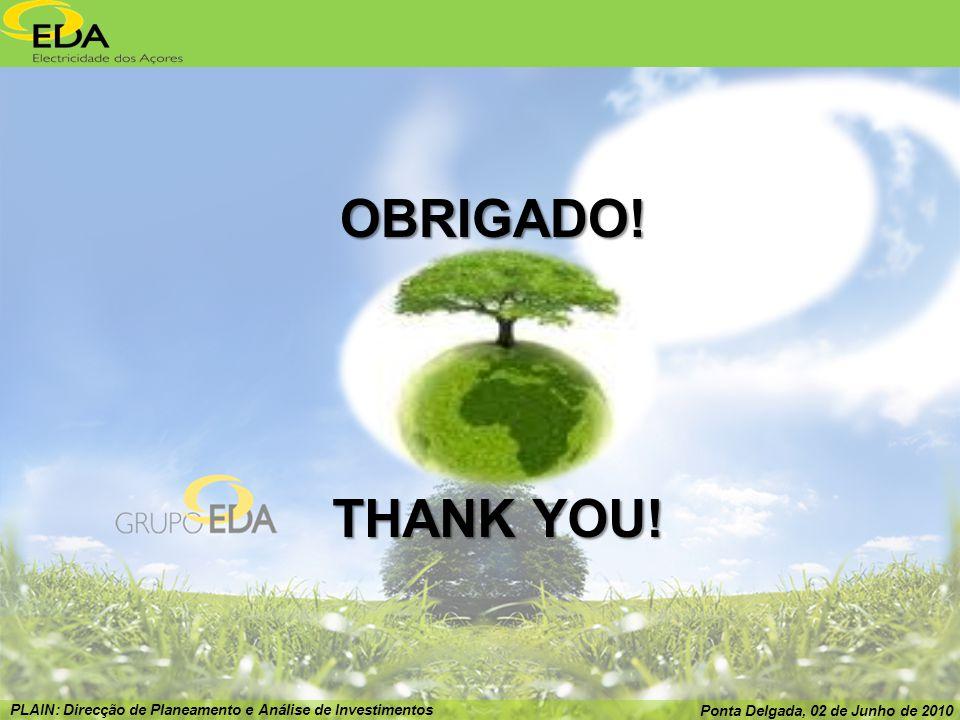 PLAIN: Direcção de Planeamento e Análise de Investimentos Ponta Delgada, 02 de Junho de 2010 OBRIGADO.