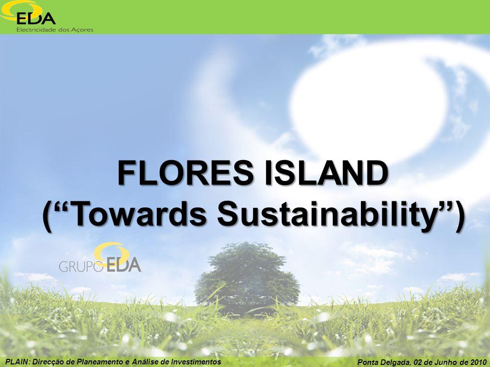 PLAIN: Direcção de Planeamento e Análise de Investimentos Ponta Delgada, 02 de Junho de 2010 FLORES ISLAND (Towards Sustainability)