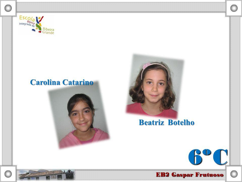 Beatriz Botelho Carolina Catarino 6º C EB2 Gaspar Frutuoso