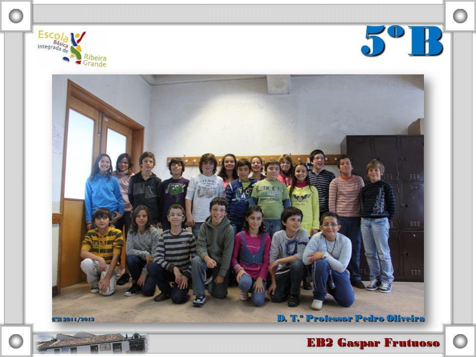 6º C EB2 Gaspar Frutuoso D. T.ª Professora Mónica Simão