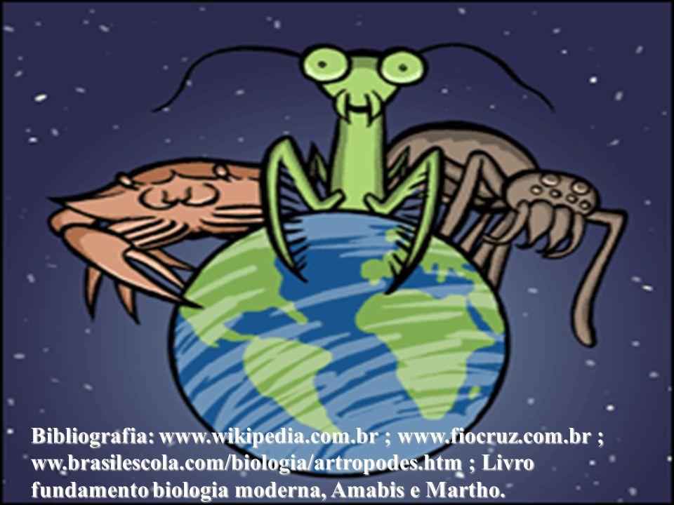 Animais de lenta locomoção, herbívoros e se enrolam em espiral Animais de lenta locomoção, herbívoros e se enrolam em espiral Esses animais habitam de