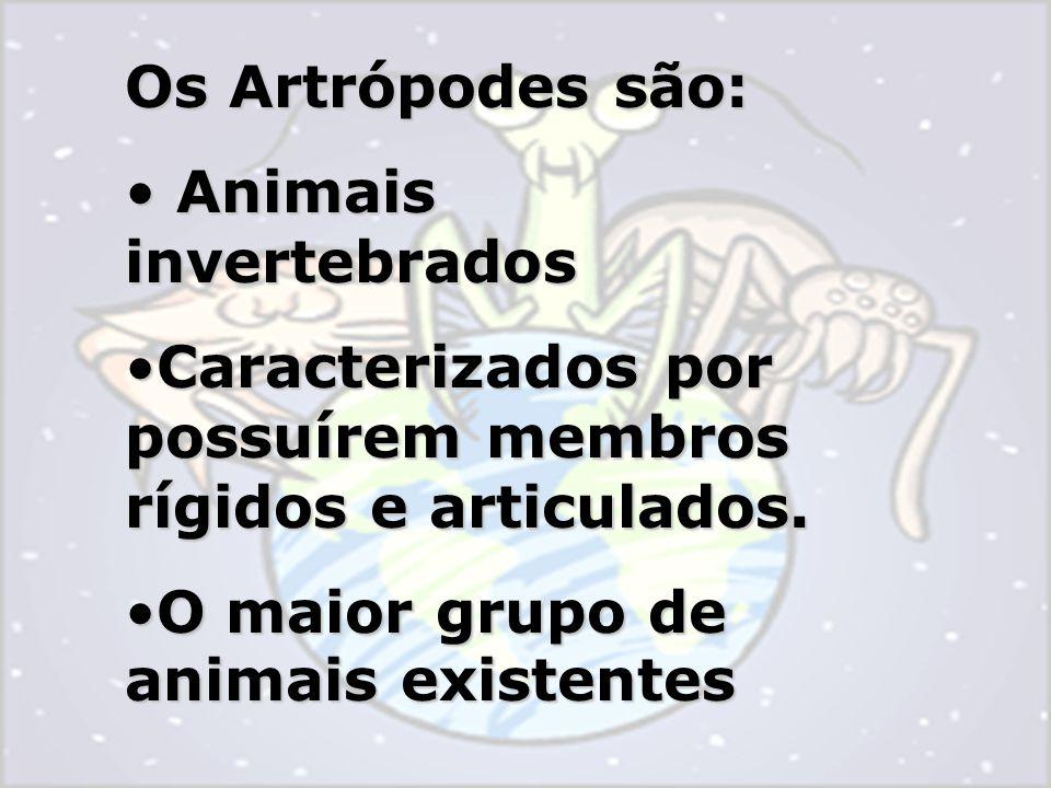 Os Artrópodes são: Animais invertebrados Animais invertebrados Caracterizados por possuírem membros rígidos e articulados.Caracterizados por possuírem membros rígidos e articulados.