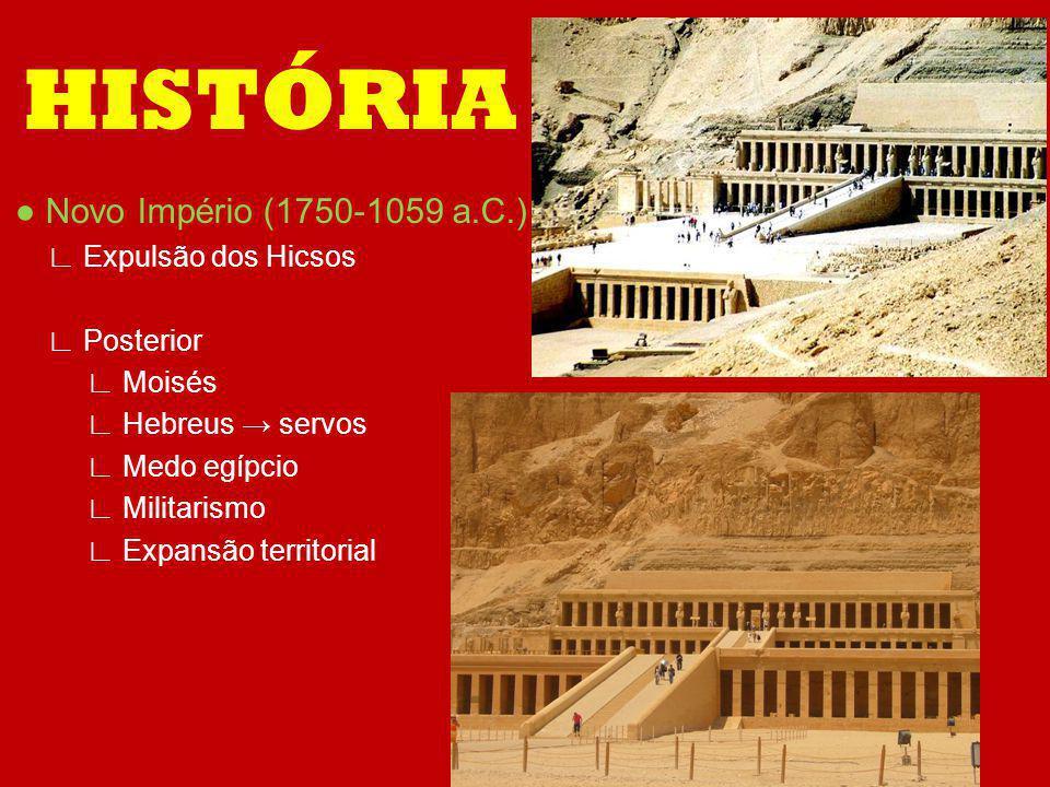 Novo Império (1750-1059 a.C.) Expulsão dos Hicsos Posterior Moisés Hebreus servos Medo egípcio Militarismo Expansão territorial HISTÓRIA