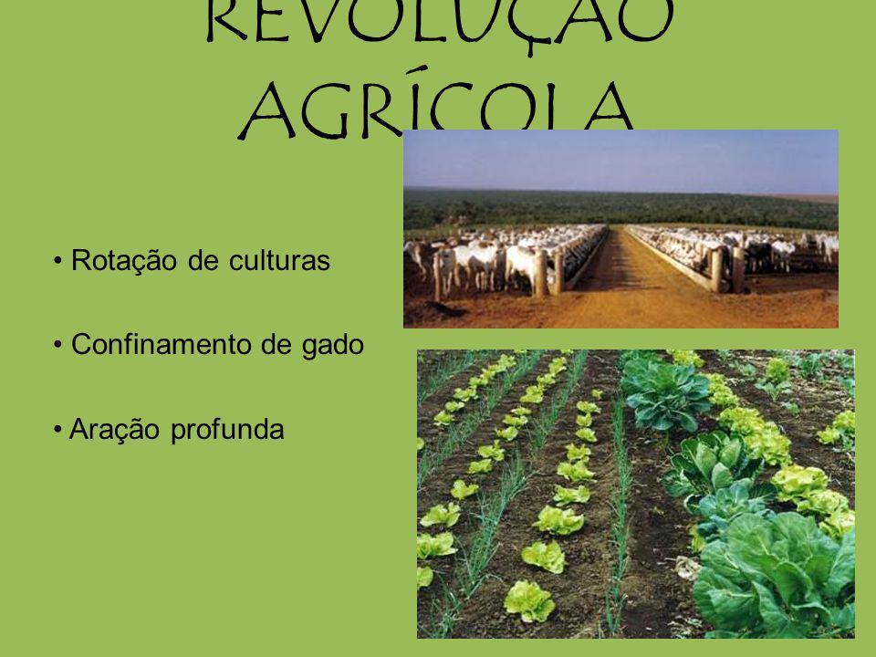 REVOLUÇÃO AGRÍCOLA Rotação de culturas Confinamento de gado Aração profunda