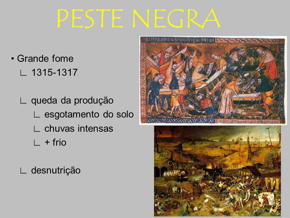 PESTE NEGRA Grande fome 1315-1317 queda da produção esgotamento do solo chuvas intensas + frio desnutrição