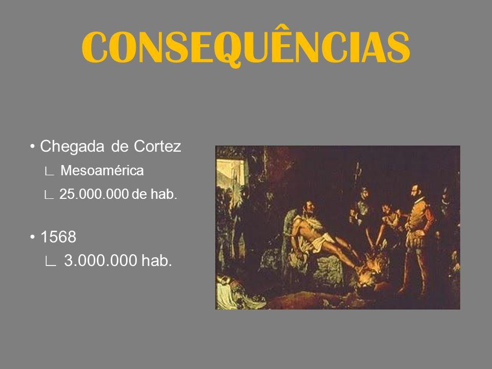 CONSEQUÊNCIAS Chegada de Cortez Mesoamérica 25.000.000 de hab. 1568 3.000.000 hab.