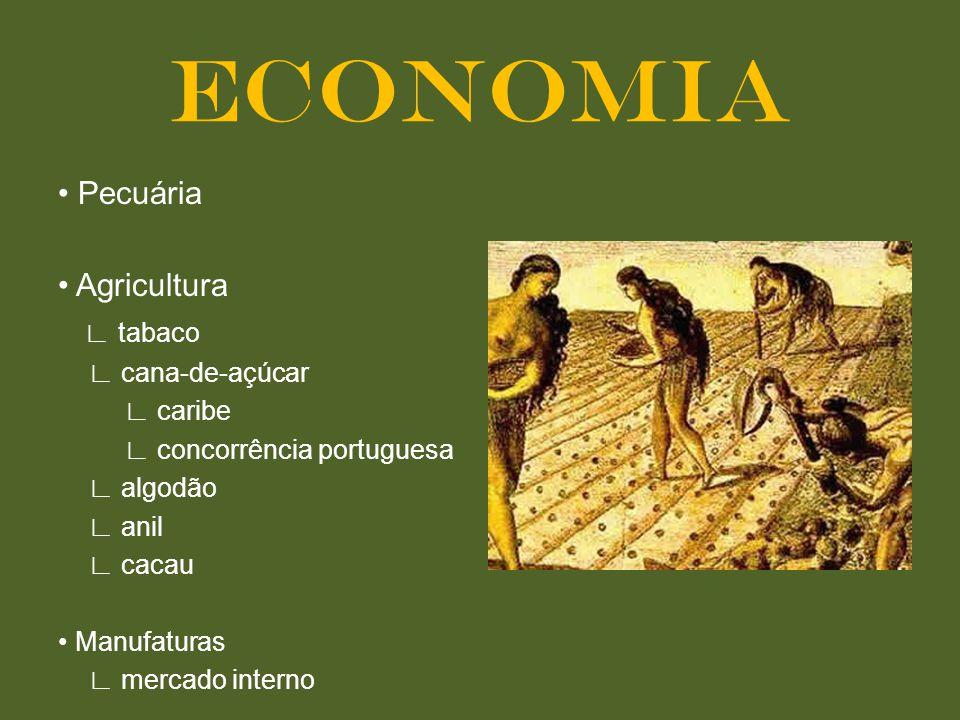 Pecuária Agricultura tabaco cana-de-açúcar caribe concorrência portuguesa algodão anil cacau Manufaturas mercado interno ECONOMIA