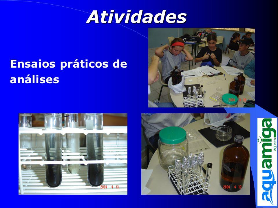 Ensaios práticos de análises Atividades