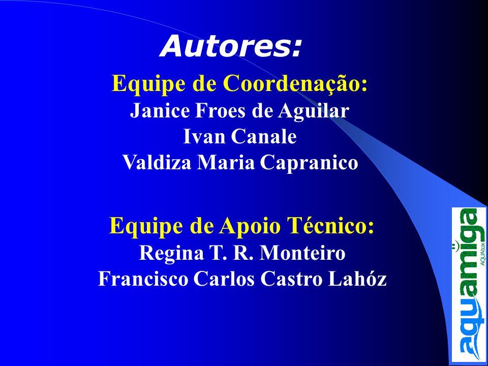Autores: Equipe de Coordenação: Janice Froes de Aguilar Ivan Canale Valdiza Maria Capranico Equipe de Apoio Técnico: Regina T. R. Monteiro Francisco C