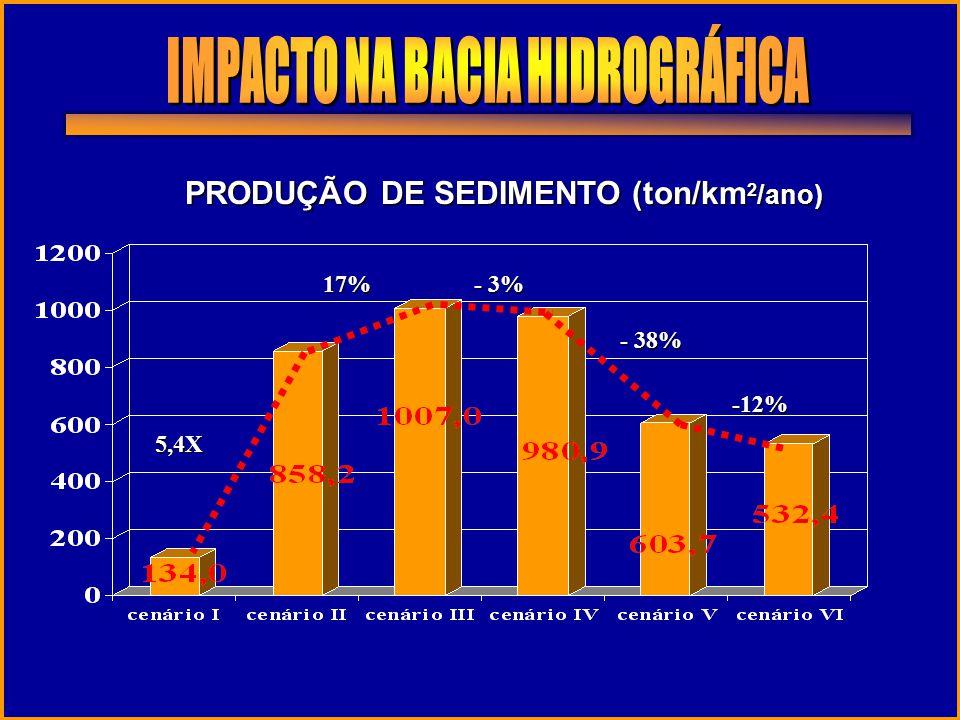 PRODUÇÃO DE SEDIMENTO (ton/km 2 /ano) - 3% - 38% -12% 17% 5,4X