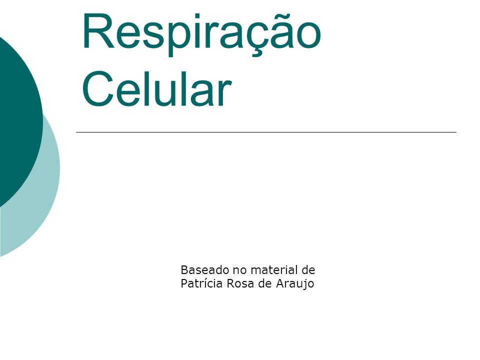Respiração Celular Baseado no material de Patrícia Rosa de Araujo