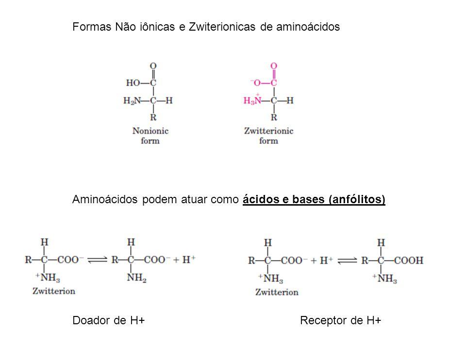 Formas Não iônicas e Zwiterionicas de aminoácidos Aminoácidos podem atuar como ácidos e bases (anfólitos) Doador de H+Receptor de H+