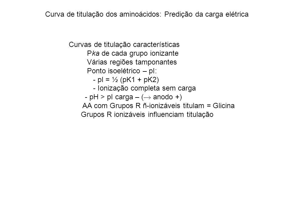 Curva de titulação dos aminoácidos: Predição da carga elétrica Curvas de titulação características Pka de cada grupo ionizante Várias regiões tamponantes Ponto isoelétrico – pI: - pI = ½ (pK1 + pK2) - Ionização completa sem carga - pH > pI carga – ( anodo +) AA com Grupos R ñ-ionizáveis titulam = Glicina Grupos R ionizáveis influenciam titulação
