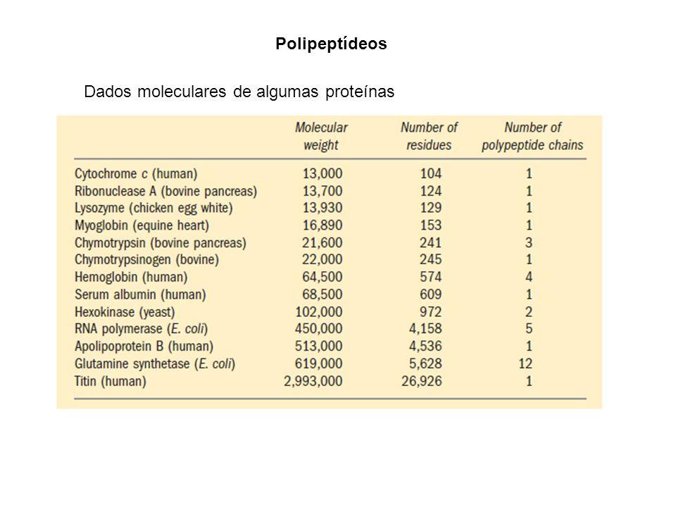 Polipeptídeos Dados moleculares de algumas proteínas
