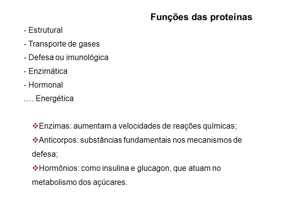Funções das proteínas - Estrutural - Transporte de gases - Defesa ou imunológica - Enzimática - Hormonal ….