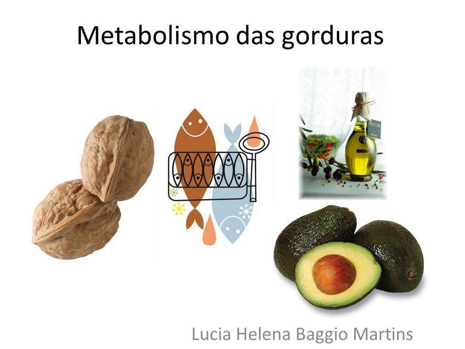 Metabolismo das gorduras Lucia Helena Baggio Martins