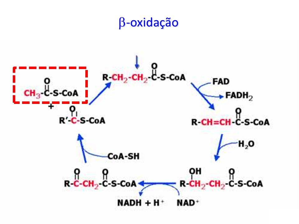 -oxidação -oxidação