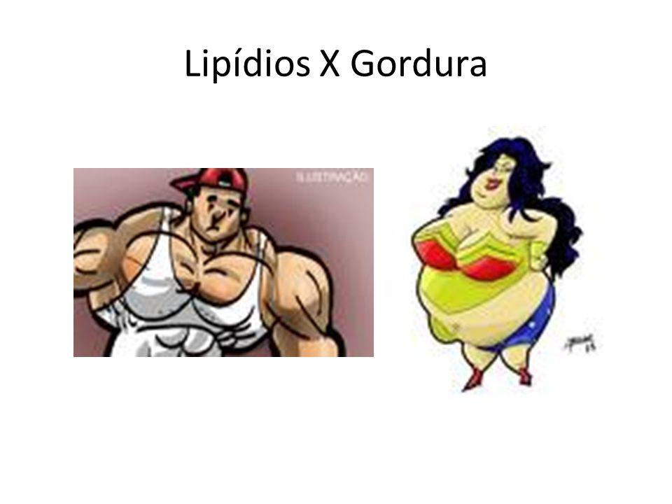 Lipídios X Gordura