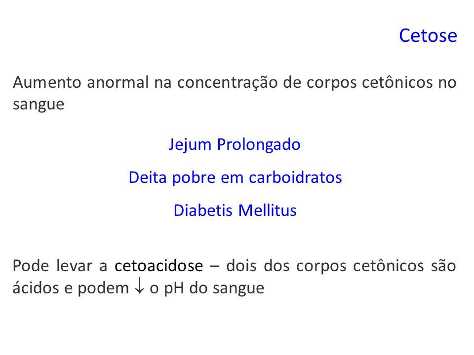 Cetose Aumento anormal na concentração de corpos cetônicos no sangue Pode levar a cetoacidose – dois dos corpos cetônicos são ácidos e podem o pH do sangue Jejum Prolongado Deita pobre em carboidratos Diabetis Mellitus