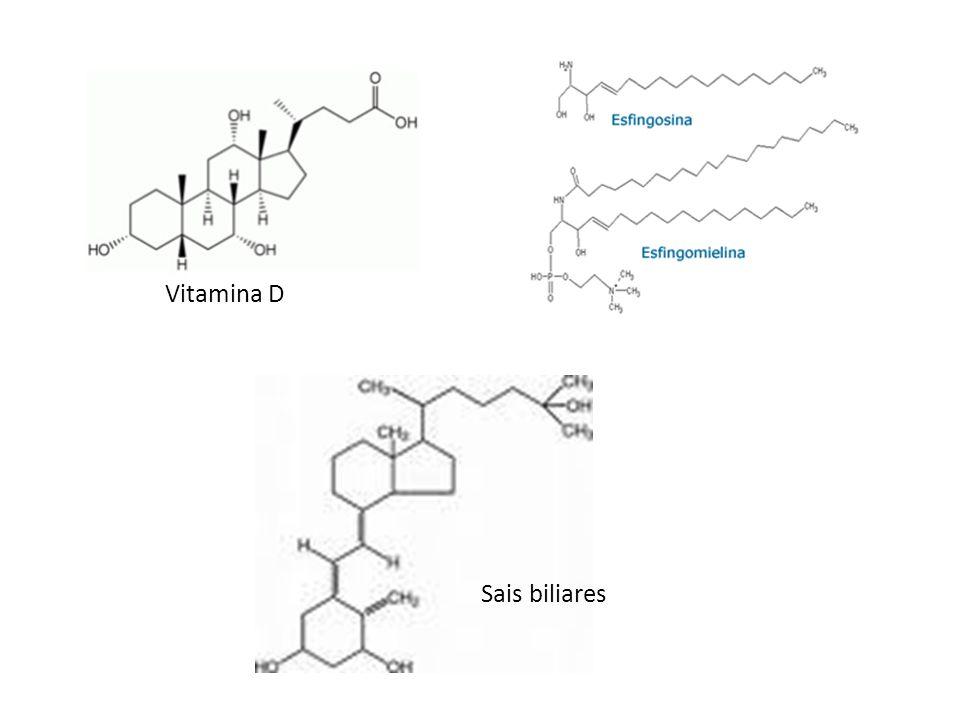 Sais biliares Vitamina D