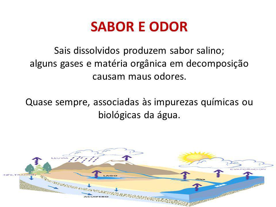 SABOR E ODOR Sais dissolvidos produzem sabor salino; alguns gases e matéria orgânica em decomposição causam maus odores. Quase sempre, associadas às i