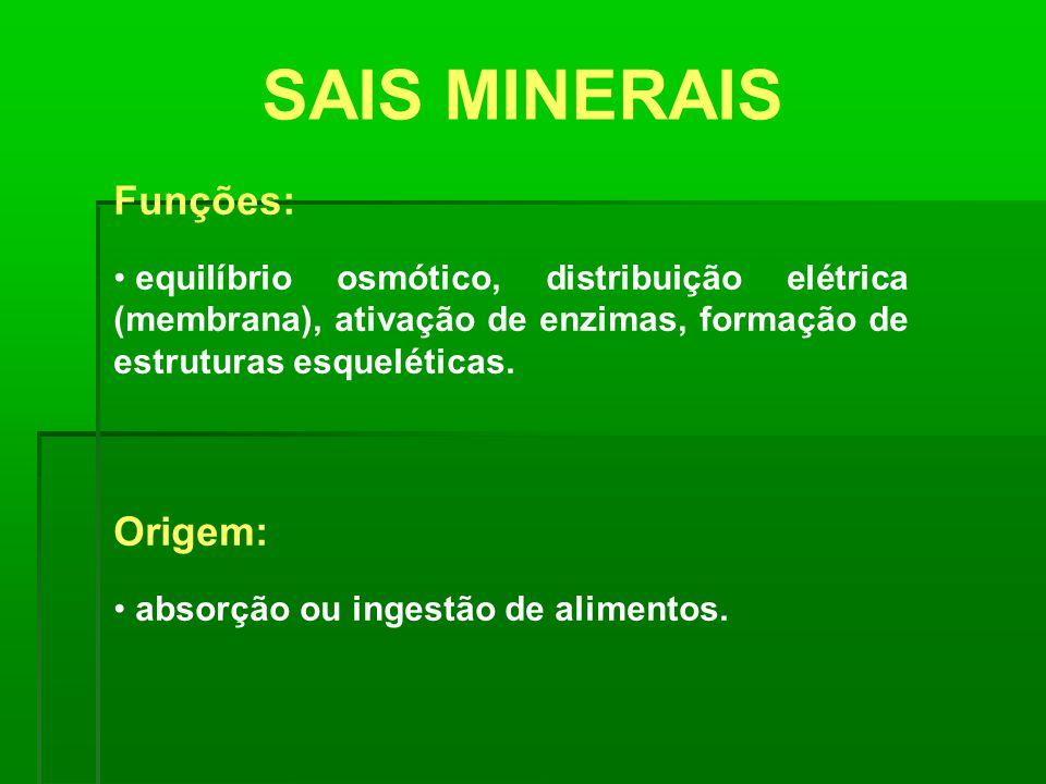 SAIS MINERAIS Funções: equilíbrio osmótico, distribuição elétrica (membrana), ativação de enzimas, formação de estruturas esqueléticas. Origem: absorç