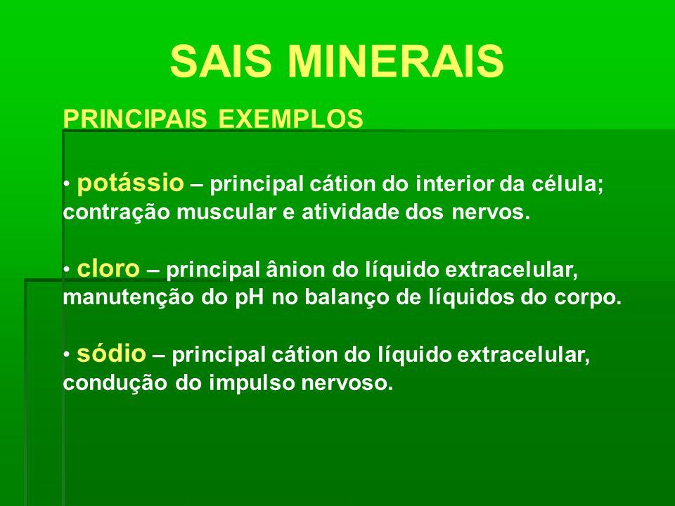 SAIS MINERAIS PRINCIPAIS EXEMPLOS potássio – principal cátion do interior da célula; contração muscular e atividade dos nervos. cloro – principal ânio
