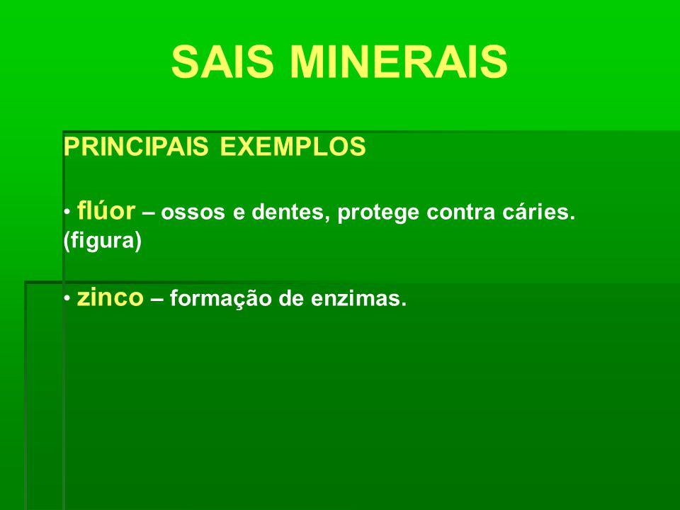 SAIS MINERAIS PRINCIPAIS EXEMPLOS flúor – ossos e dentes, protege contra cáries. (figura) zinco – formação de enzimas.