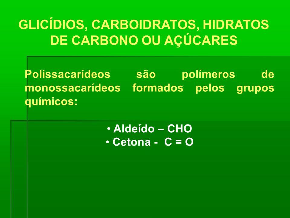 GLICÍDIOS, CARBOIDRATOS, HIDRATOS DE CARBONO OU AÇÚCARES Polissacarídeos são polímeros de monossacarídeos formados pelos grupos químicos: Aldeído – CH