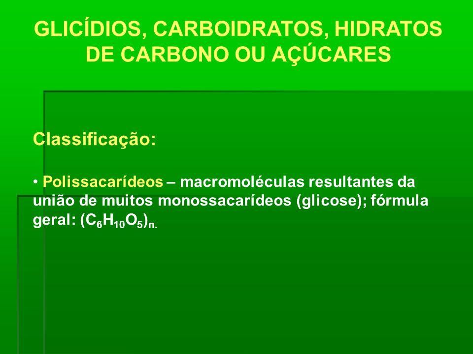 GLICÍDIOS, CARBOIDRATOS, HIDRATOS DE CARBONO OU AÇÚCARES Classificação: Polissacarídeos – macromoléculas resultantes da união de muitos monossacarídeo