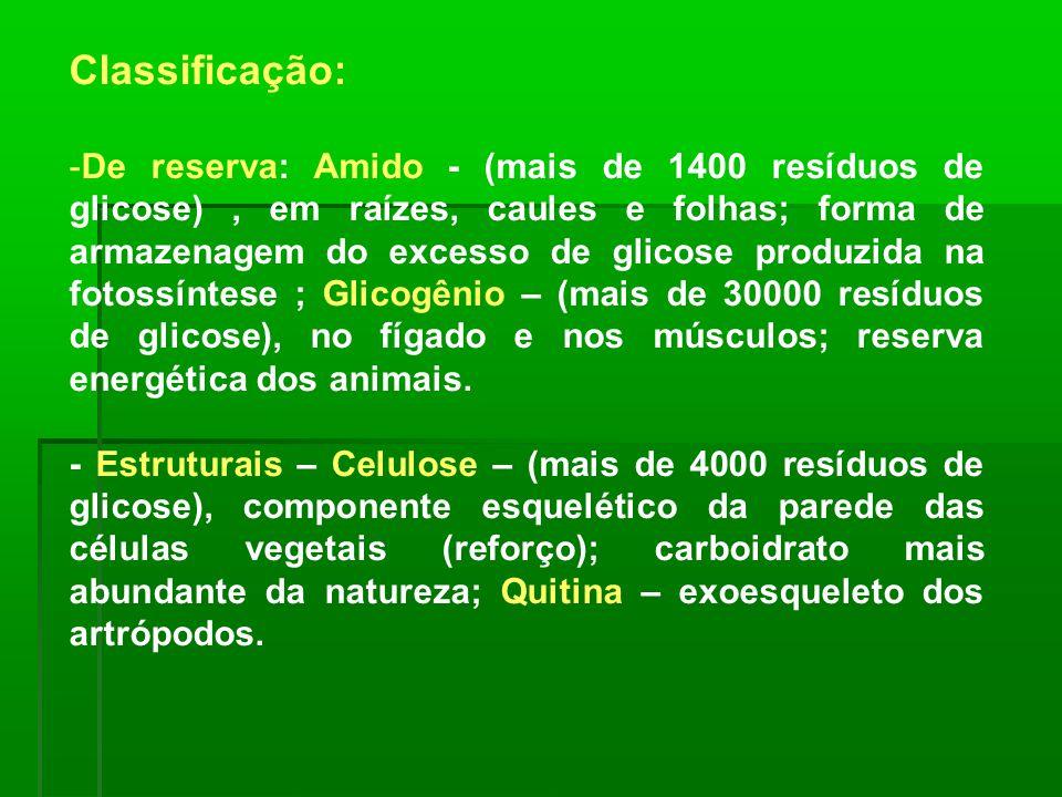 Classificação: -De reserva: Amido - (mais de 1400 resíduos de glicose), em raízes, caules e folhas; forma de armazenagem do excesso de glicose produzi