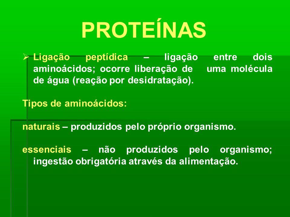 PROTEÍNAS Ligação peptídica – ligação entre dois aminoácidos; ocorre liberação de uma molécula de água (reação por desidratação). Tipos de aminoácidos