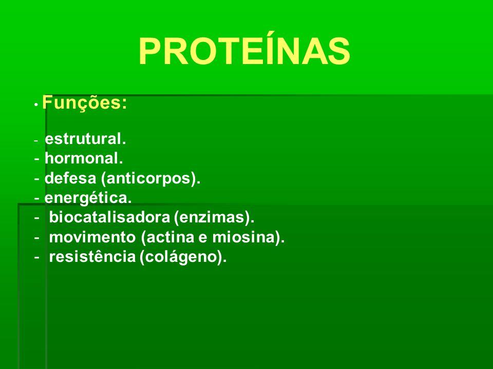 PROTEÍNAS Funções: - estrutural. - hormonal. - defesa (anticorpos). - energética. - biocatalisadora (enzimas). - movimento (actina e miosina). - resis