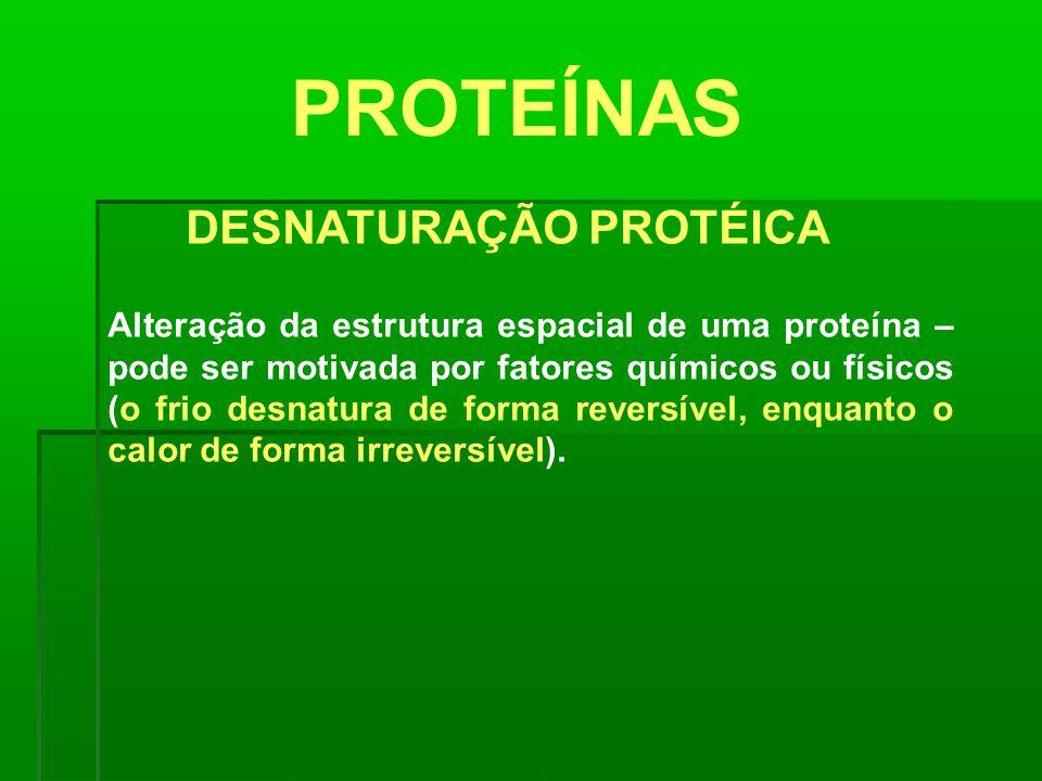 PROTEÍNAS DESNATURAÇÃO PROTÉICA Alteração da estrutura espacial de uma proteína – pode ser motivada por fatores químicos ou físicos (o frio desnatura