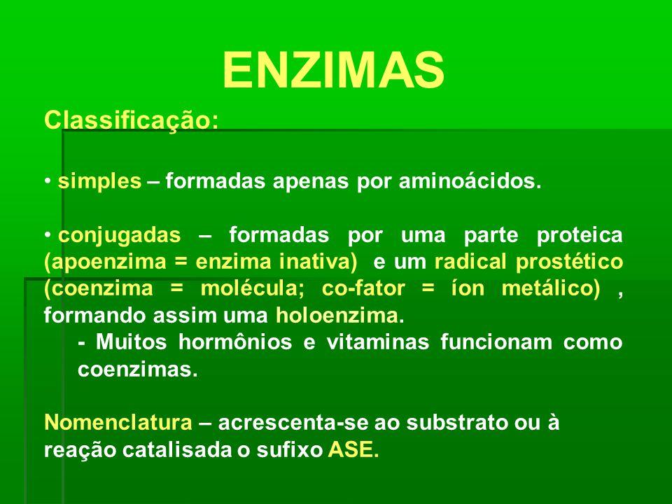 ENZIMAS Classificação: simples – formadas apenas por aminoácidos. conjugadas – formadas por uma parte proteica (apoenzima = enzima inativa) e um radic