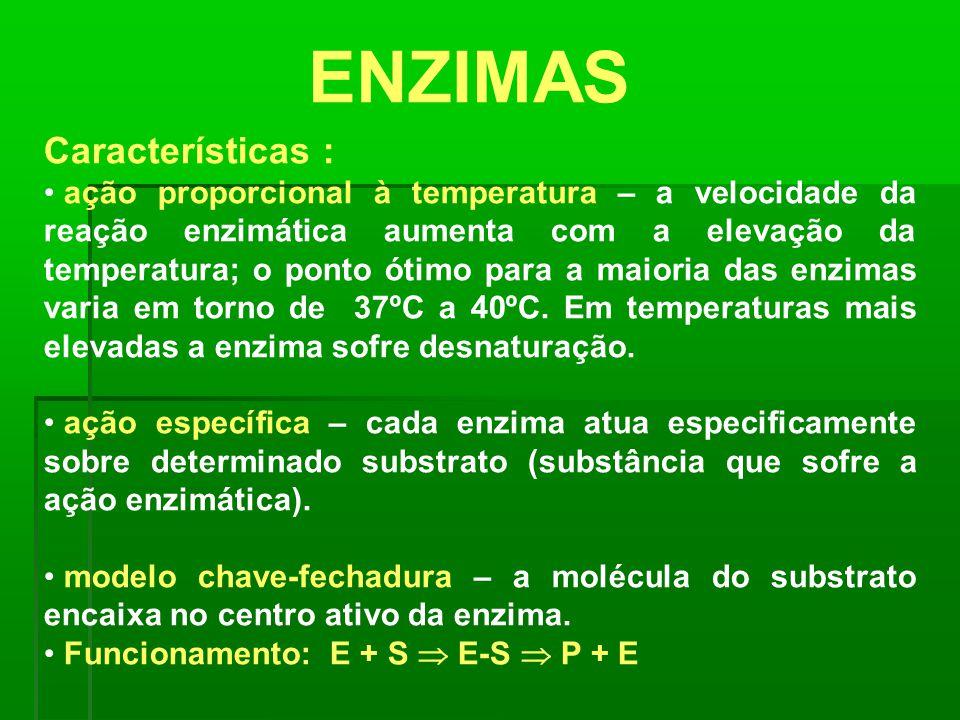 ENZIMAS Características : ação proporcional à temperatura – a velocidade da reação enzimática aumenta com a elevação da temperatura; o ponto ótimo par